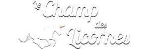 PONEY CLUB Morlanwelz – Le Champ Des Licornes